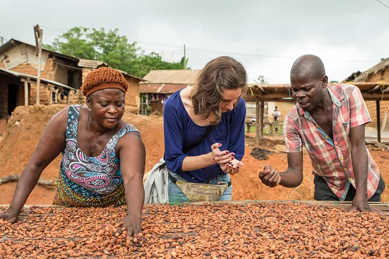 Two women and man sort through cocoa beans with their hands.