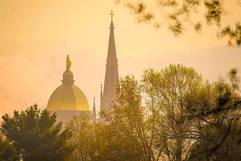 The Dome and Basilica on a golden misty morning